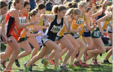 #STATEMEIER: Junior Emily Stegmeier running her race at the state competition on November 7 at Detweiller Park. Stegmeier took 29th place overall.